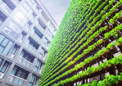 Master of Environment and Sustainability – Monash University